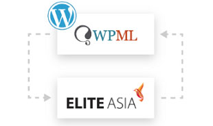 Website Localisation Integration with WPML in Hong Kong